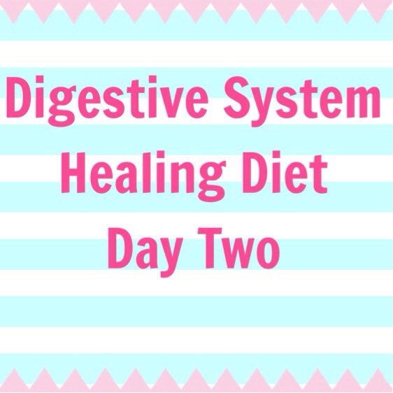 how to get your digestive system back on track